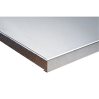 304 Stainless Steel Wood-Filled Workbench Tops FI268 | NIS Northern Industrial Sales