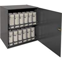 Aerosol Storage Cabinet FN379 | NIS Northern Industrial Sales