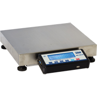 Bench Platform Scale | NIS Northern Industrial Sales