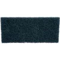 Scrubbers, Pads & Handles NG994 | TENAQUIP