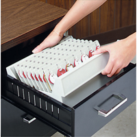 Dupli-Key® In Drawer Key Trays OG900 | NIS Northern Industrial Sales