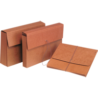 Expandable File Folder | NIS Northern Industrial Sales