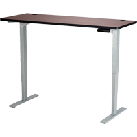 Electric Height-Adjustable Table OP730 | TENAQUIP