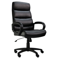 Activ™ Series A-601 Office Chair OP806 | NIS Northern Industrial Sales
