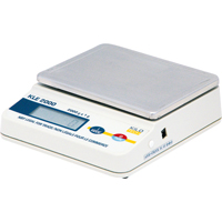 Economy Precision Scales PE131 | NIS Northern Industrial Sales