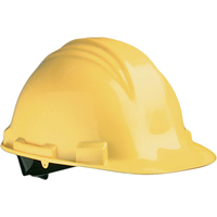 Hardhats | NIS Northern Industrial Sales