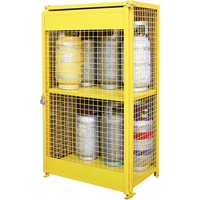 Gas Cylinder Cabinets SAF847 | NIS Northern Industrial Sales