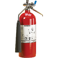 Aluminum Cylinder Carbon Dioxide (CO2) Fire Extinguishers SAL344 | NIS Northern Industrial Sales