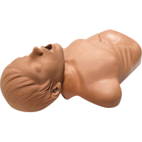 AED Plus® - Training Mannequin SAX742 | NIS Northern Industrial Sales