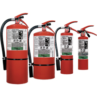 Pyro-Chem FE-36™ Clean Agent Fire Extinguishers SDN829 | NIS Northern Industrial Sales