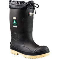 Titan Safety Boots SDP297 | NIS Northern Industrial Sales
