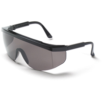 Tomahawk® Safety Glasses SE589 | NIS Northern Industrial Sales