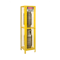 Gas Cylinder Cabinets SEB838 | NIS Northern Industrial Sales