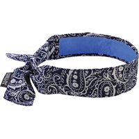 Chill-Its® 6700CT Cooling Bandanas SEI647 | NIS Northern Industrial Sales