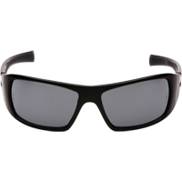 Goliath Safety Eyewear SFQ555 | TENAQUIP