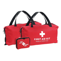 Golf First Aid Kit SGB075 | NIS Northern Industrial Sales