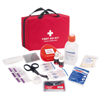 First Responder First Aid Kit SGB079 | NIS Northern Industrial Sales