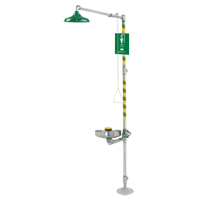 ADA Eye/Face Wash and Shower SGC287 | NIS Northern Industrial Sales