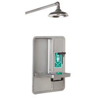 Eye/Face Wash and Shower SGC296 | NIS Northern Industrial Sales
