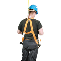 Titan™ Contractor's Harnesses SN067 | NIS Northern Industrial Sales