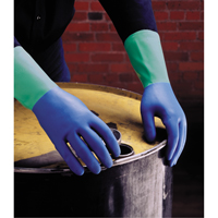 ProtectorTM Nitrile Gloves SN793 | NIS Northern Industrial Sales