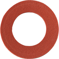 Replacement Inhalation Gaskets SR190 | NIS Northern Industrial Sales