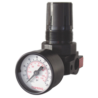 Mini Regulators TA849 | NIS Northern Industrial Sales