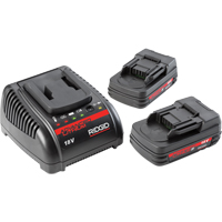 2.0Ah Batteries & 120V Charger TYB146 | NIS Northern Industrial Sales