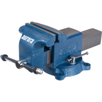 Heavy-Duty Bench Vise TYL100 | NIS Northern Industrial Sales