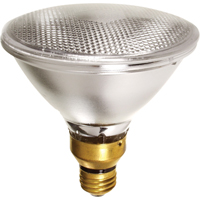 Halogen Lamps XB135 | NIS Northern Industrial Sales