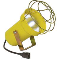 Dock Lights - Accessories XC224 | NIS Northern Industrial Sales