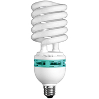 Hang-A-Light® Work Light Bulb XC755 | TENAQUIP
