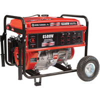 6500-W Gasoline Generators w/Wheel Kit XE634 | TENAQUIP