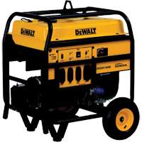 Portable Gasoline Generator XH080 | NIS Northern Industrial Sales