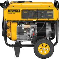 Commercial Portable Generator XI286 | NIS Northern Industrial Sales